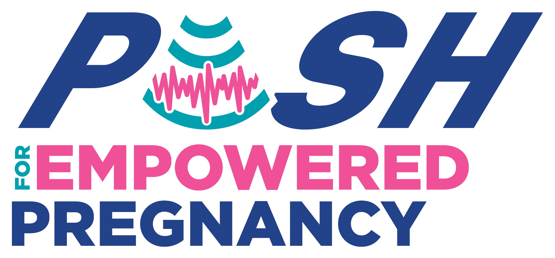 Logo of PUSH for Empowered Pregnancy
